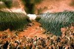 les-dix-commandements-moise-mer-rouge-930620-2309_scalewidth_630
