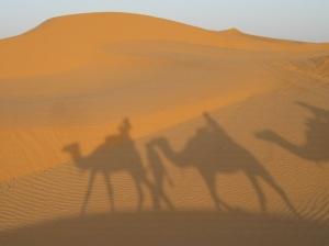 rando_dromadaire_trek_dunes_de_sable_tunisie