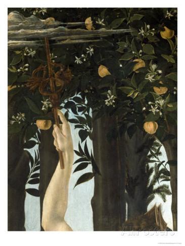 PPCADUCEEsandro-botticelli-primavera-c-1478