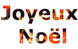 NOELob_f2e68ac1ef9aa0f2774522ed8effdcda_noel5