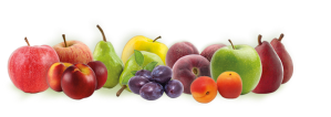 FRISEfruitsPommes