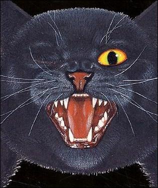 chat-noir-1