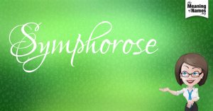 symphorose-ta0cc529f205b09d4c5c2bf96d4b0396299be9fd4b53c32d11c1a98b1c46db0e9k-lq